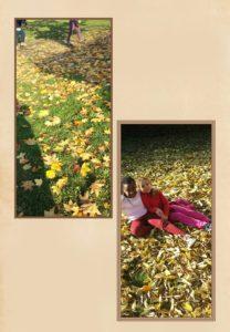 le-foglie-e-i-bambini_0001_20161028122934